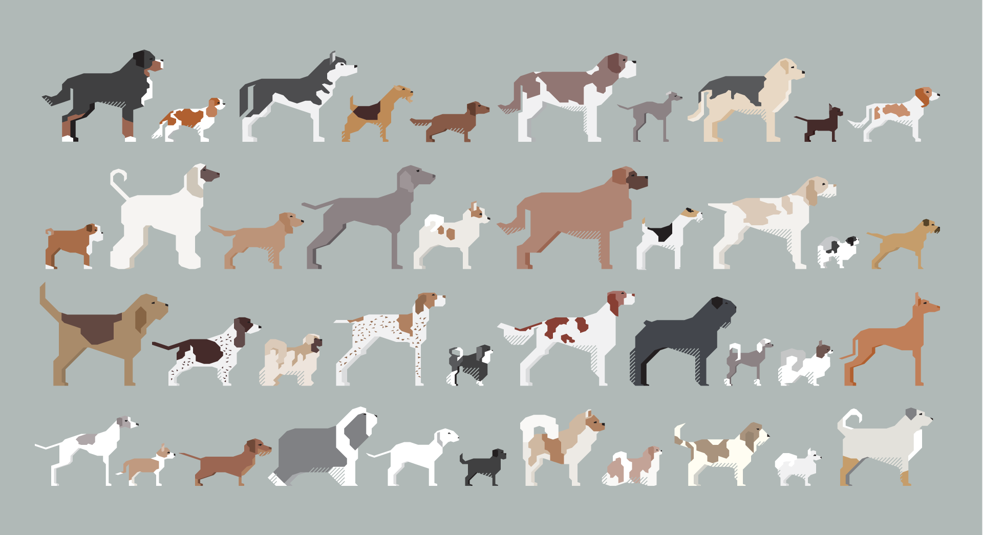dogs-illustration