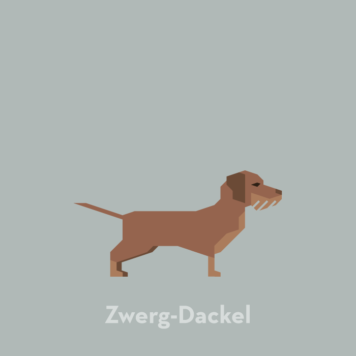 illustration-dog-zwerg-dackel